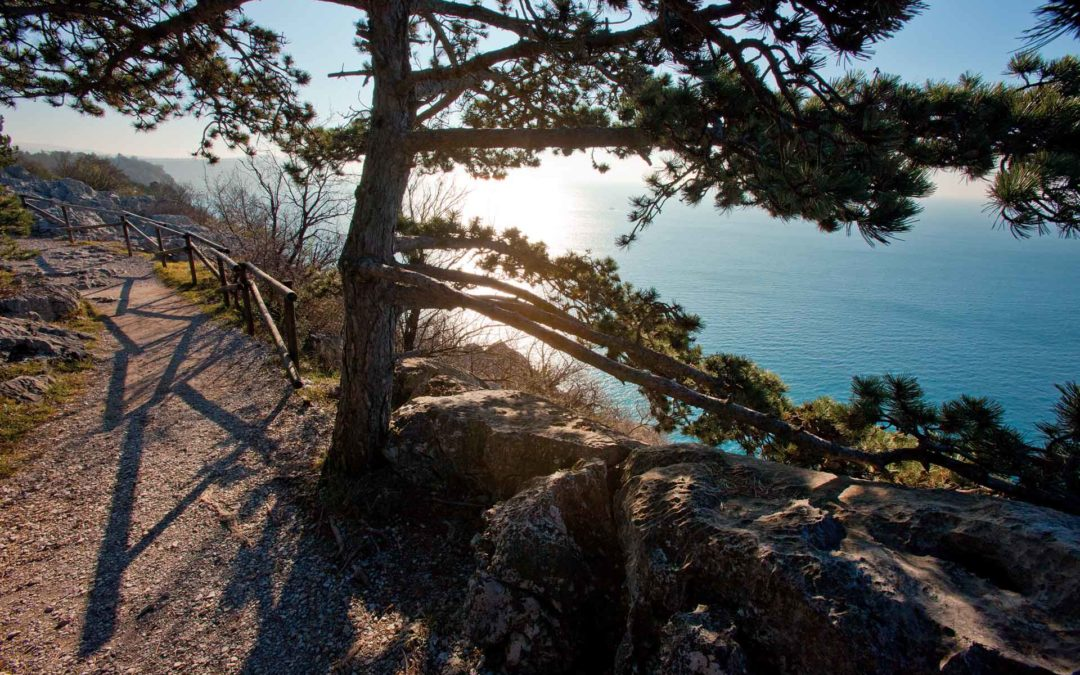 Activities and nature in Trieste's Karst Plateau
